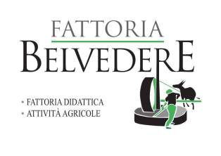www.fattoriabelvedere.it