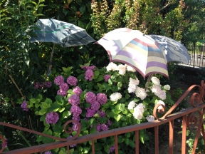 tre ombrelli