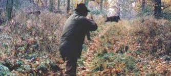 caccia daniele - Copia - Copia