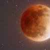 luna rossa untitled